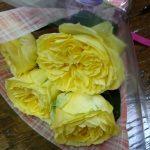 今日は花束を君に贈ろう。